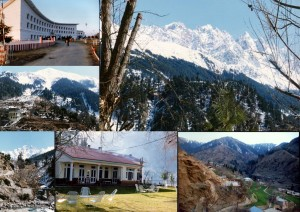 COLLAGE OF SWAT PICTURES