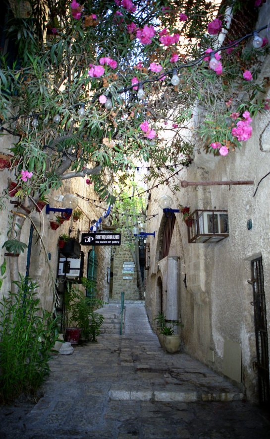 RENNOVATED OLD STREET IN JAFFA