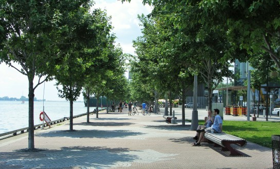 Walkway on the Ontario Lake. on Queens Quay E