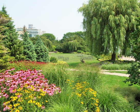 TORONTO MUSIC GARDENS latest picture
