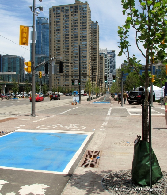 Bicyclists' Lanes form Spadina to Harbourfront